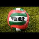 Мяч волейбольный тренировочный WINNER SPEED