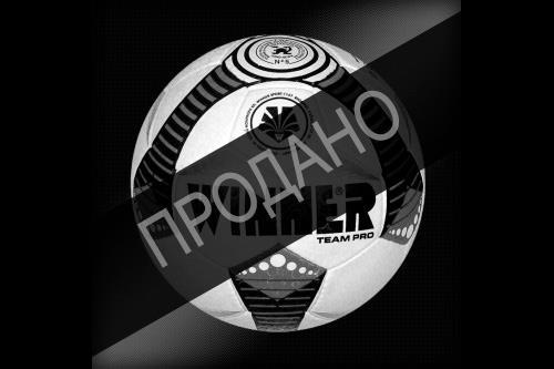 Мяч футбольный тренировочный WINNER TEAM PRO