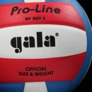 Волейбольные мячи GALA