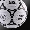 Футзальные мячи WINNER