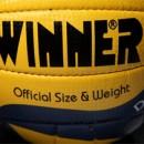 Волейбольные мячи WINNER
